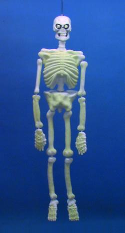 Noname Skeleton 3D UV Aktive 130 cm [1 pcs left]