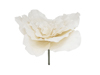 Giant Flower (EVA), artificial, cream white, 80cm
