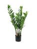 Europalms Zamifolia, artificial plant, 70cm