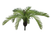 Cycas Fern, artificial plant, 50 cm