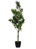 Podocarpus tree, artificial plant, 90cm