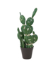 Mixed cactuses, artificial plant, green, 54cm