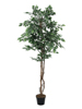 Variegated Ficus, artificial plant, 180cm