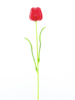 Crystal tulip,artificial flower, red 61cm 12x