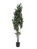 Europalms Schefflera, artificial,120cm