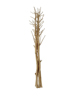 Fennel bunch, dried, gold, 160cm