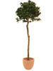 Europalms Laurel ball tree, artificial plant, 180cm