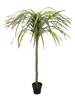 Dracena, red-green, artificial, 170cm