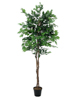 Ficus Tree Multi-Trunk, artificial plant, 210cm