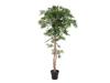 Europalms Ficus longifolia, artificial plant, 165cm