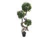Ficus spiral trunk, artificial plant, 160cm