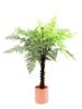Europalms Woodwardia tree, artificial, 180cm