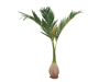 Phoenix palm, artificial plant, 240cm