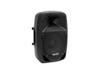 VFM-210 2-way Speaker