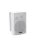 WPS-6W PA Wall Speaker