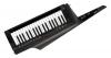 RK-100S 2BK Keytar Black
