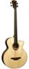 Lag Guitars T177BCE