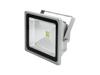 LED IP FL-50 COB 6400K 120¬° classic