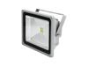 LED IP FL-50 COB 3000K 120¬° classic