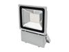 LED IP FL-100 6400K