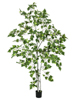 Birch Tree, artificial plant, 180cm