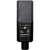 DGT 650 USB Stereo Microphone