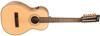 Vintage VE880PB-12 Paul Brett Signature E/A guitar