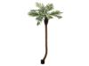 Phoenix palm tree luxor curved artificial plant 240cm