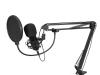 BMS-1C USB Condenser Broadcast Microphone Set