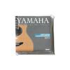 Yamaha AEP12