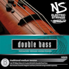 D'Addario NS616 LOW B