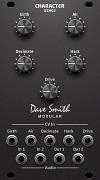 DSM02 Character Module