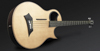 Warwick Alien Acoustic Bass 4 Prefix Fretted