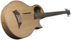 Warwick Alien Acoustic Bass 5 Prefix Fretted Left