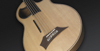 Warwick Alien Acoustic Bass 5 Prefix Fretless Left