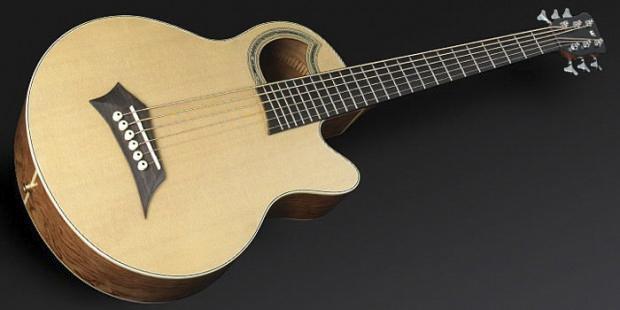Warwick Warwick Alien Acoustic Bass 6 Prefix Fretted