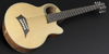 Warwick Alien Acoustic Bass 6 Prefix Fretted