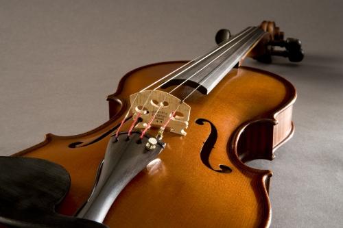 V300 Violin