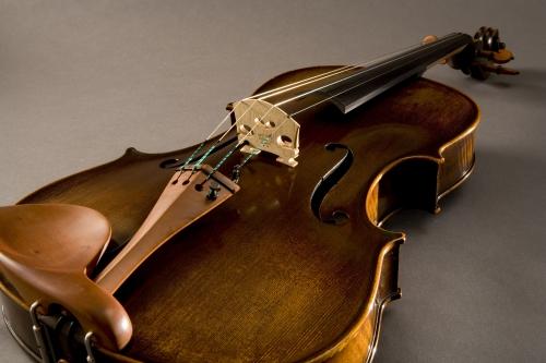 V400 Viola