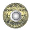 Strap-Locks Metamorphosis