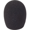 5cm SGM Foam (24/25) (Single)