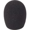 5cm SGM Foam (24/25) (Single)
