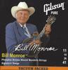 Gibson GBMS Bill Monroe Sig. Mandolin