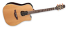 Takamine GB7C Garth Brooks