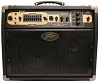 Peavey Ecoustic E110 Acoustic Amplifier