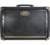 Peavey Ecoustic E208 Acoustic Amplifier
