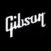 Gibson  Les Paul Thin Body Case