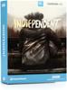 SDX Indiependent (Download)