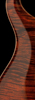 Paul's Guitar Trem OI