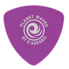Planet Waves 2DPL6-25